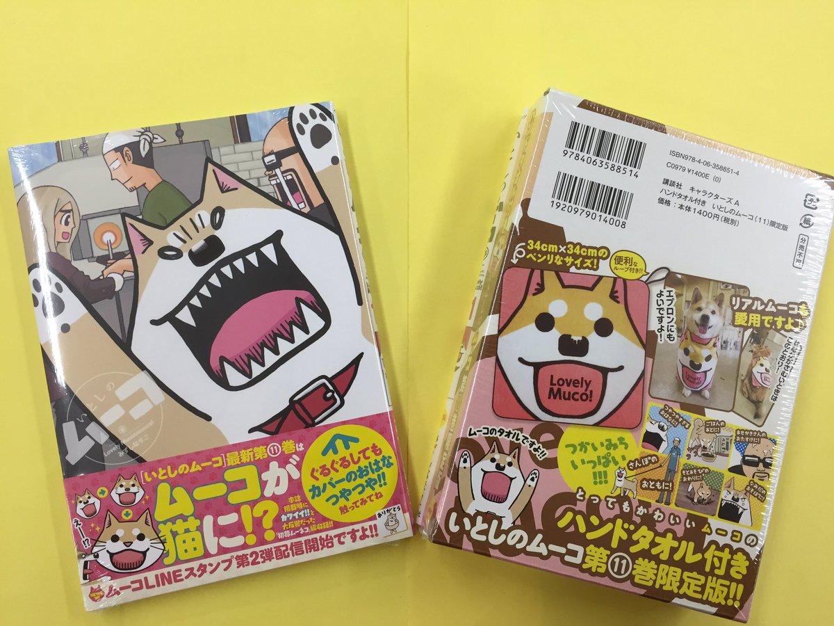 【テレビアニメになって、人気急上昇💕】小学生にも大人気✨「いとしのムーコ」最新11巻発売中❣️犬派の方にはたまらない💕コ