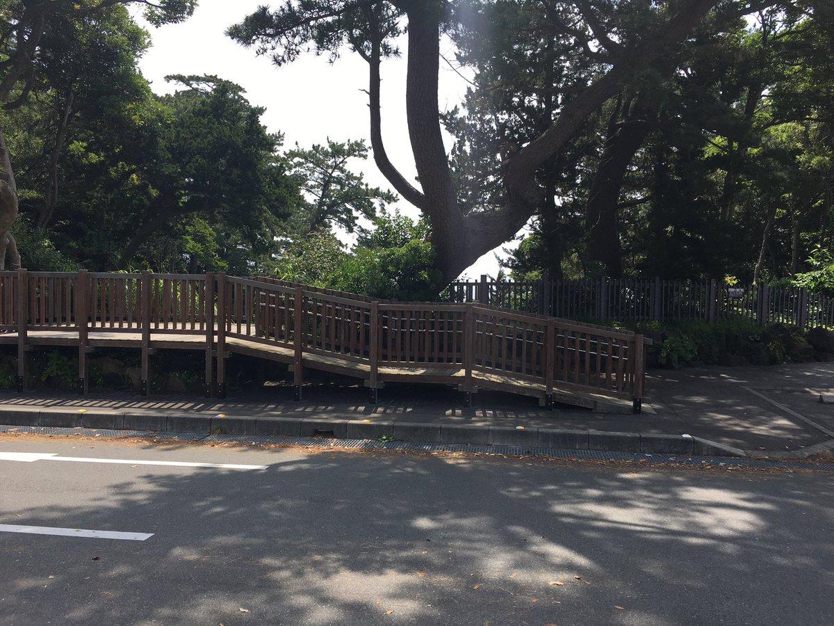 ううむ実際は木に遮られて吊り橋見えへんか〜作中だと駐車スペースの場所は現地では車道なのね@城ヶ崎海岸 #matoi_an