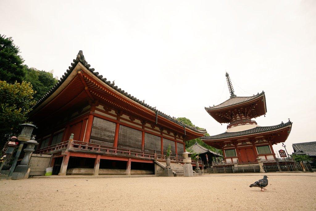 尾道はたくさんの映画のロケ地になっております。「東京物語」の浄土寺、「転校生」での階段落ちのシーンは御袖天満宮、そして「
