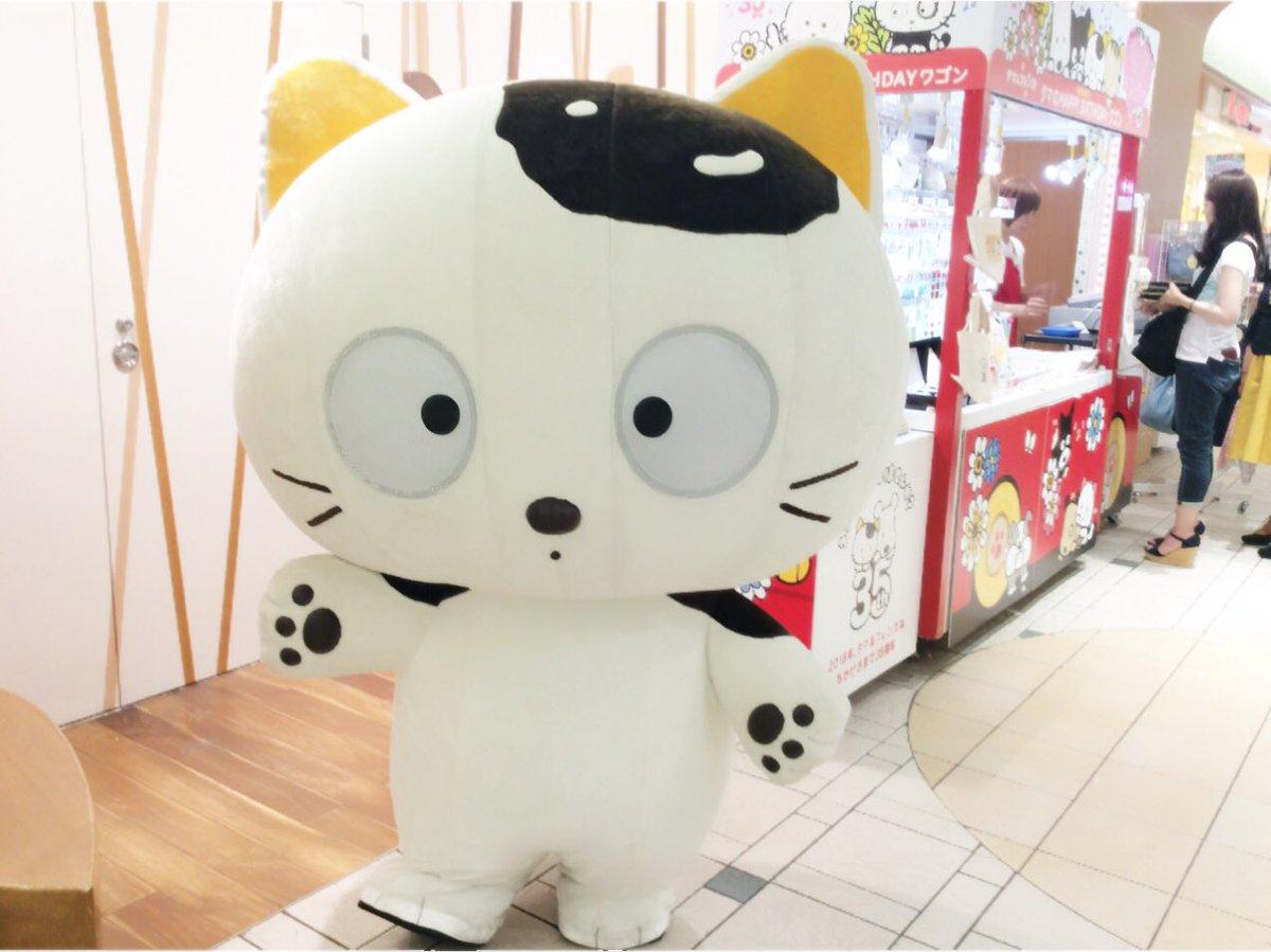 東京駅一番街で開催中のタマのHAPPY BIRTHDAYワゴン、タマのグリーティング大盛況でした!明日もまた14時・16