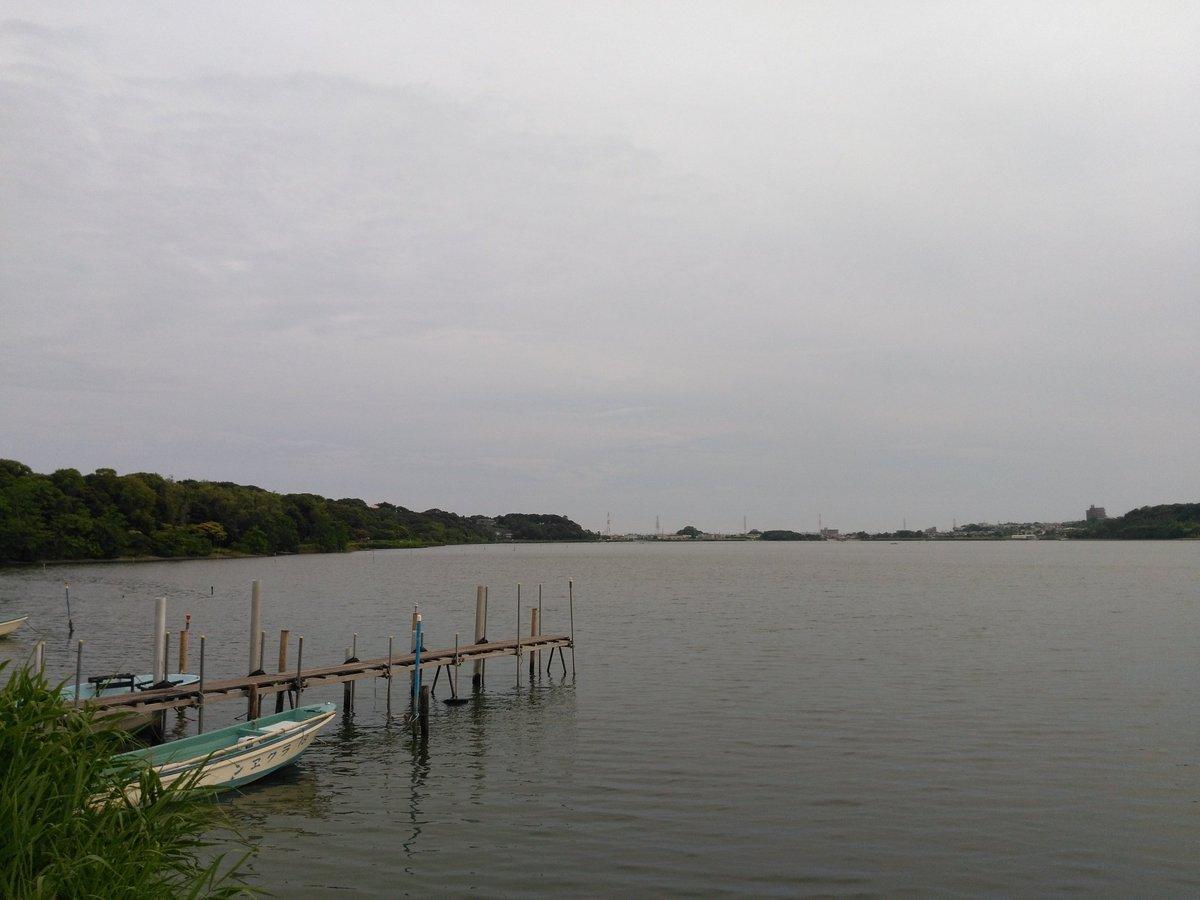 というわけで今日は、静岡県浜松市のとっても有名な湖に来ています。浜松で湖といえば……そう!佐鳴湖!!苺ましまろにも出てき