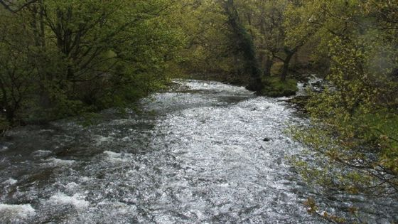Snowdonia rainwater to be used for for energy scheme