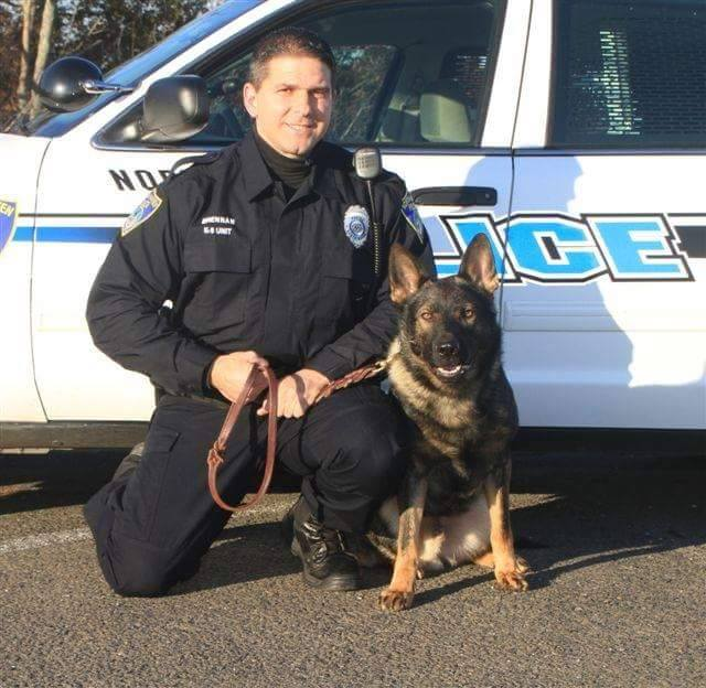 North Haven mourning loss of police K-9