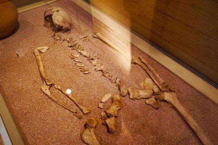 Londra'daki Southwark'da bir mezardan bulunan genç bir bireye ait iskelet, şu ana kadar bilinen en erken interseks birey olarak kayda geçti. https://t.co/YnUGmes13o