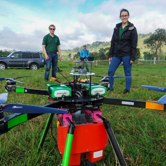 Climate change in drones' sights with ambitious plan to remotely plant nearly 100,000 trees a day