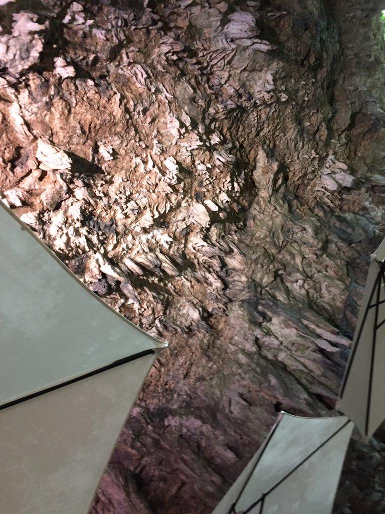 ケイブカフェは洞窟の中にある癒しカフェ〜ここの中で遺跡も発掘していて色々出てきてるらしいですよ。#ガンガラーの谷#あまん