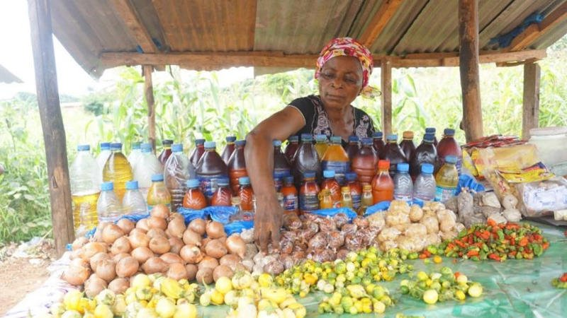 Liberia Chamber of Commerce Struggles to Increase Female Participation - The Bush Chicken