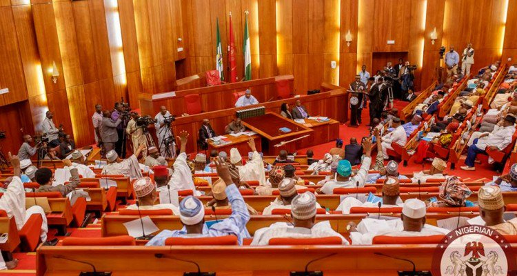 Senate targets Ali over unremitted N4trillion Customs revenue
