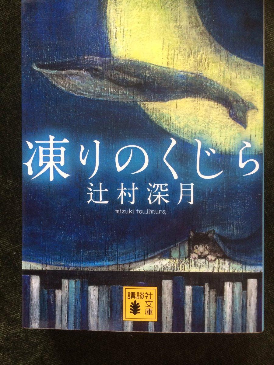 辻村深月さん凍りのくじら読ませて頂きました。壊れそうな儚い文章の中にドラえもんの要所が主にしてあるのが面白く副産物として