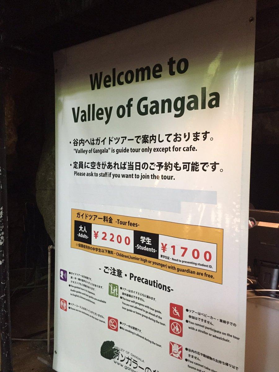 ガンガラーの谷のツアーこれからです。てこちゃん達も行った洞窟のカフェが既に素敵すぎる#あまんちゅ