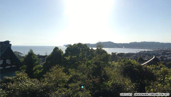 【OST】黛静馬です。鎌倉は、我々西星にとっても馴染みの深い場所ですが、いつもこの景色には背筋の伸びる想いです。本日の試