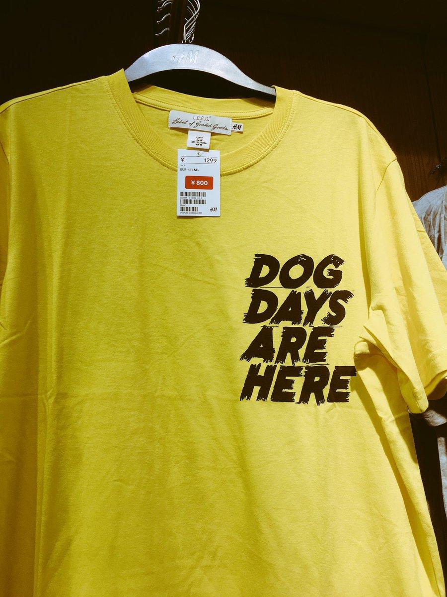 例のやつを発見🐺💖#DogDays?