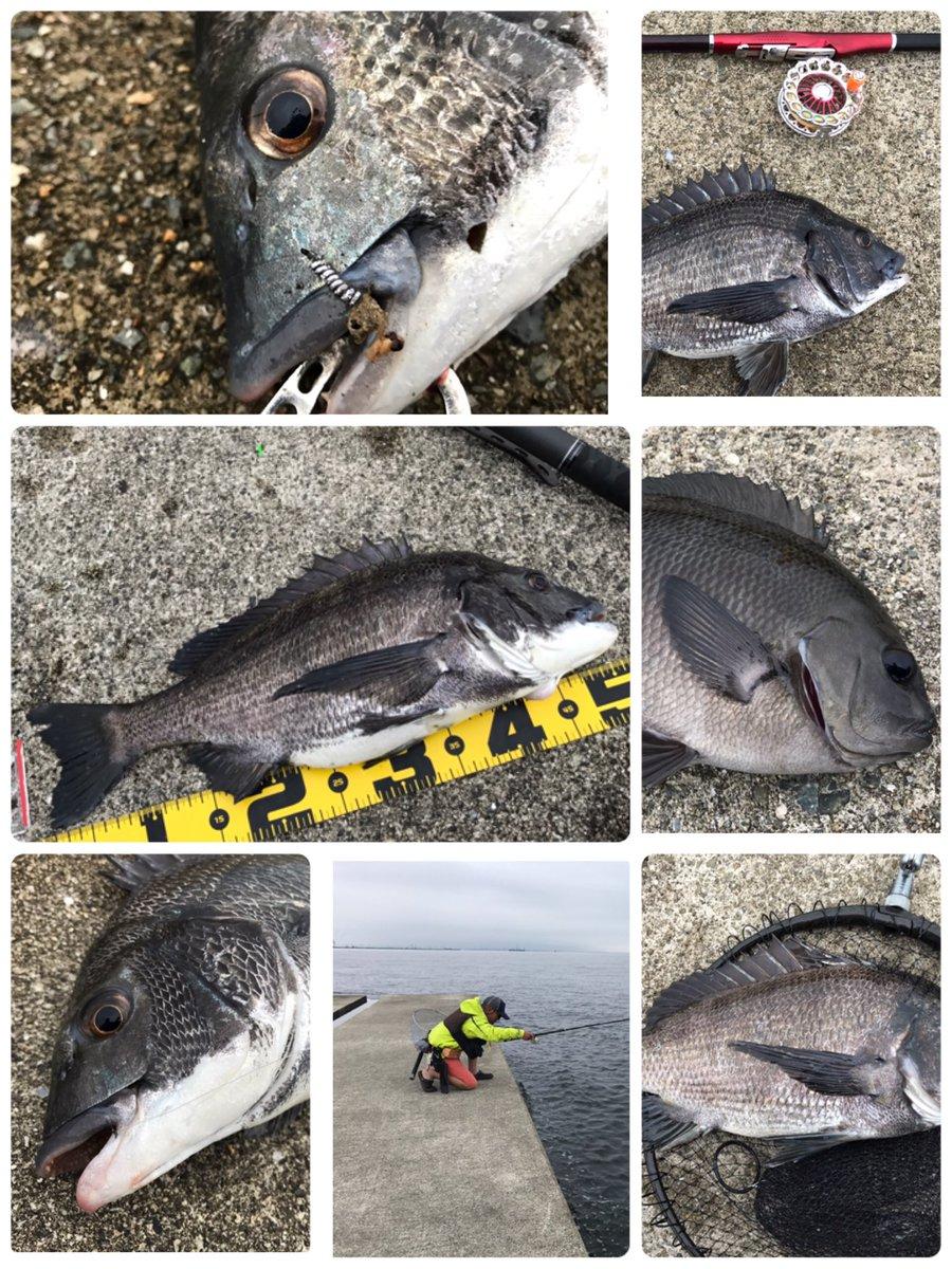 今日は沖堤防ランガン午前中は神戸初渡堤。午後からは尼崎へ両場所で初目印ドリフターズ^ ^初めてにしては満足な釣果で仲間で