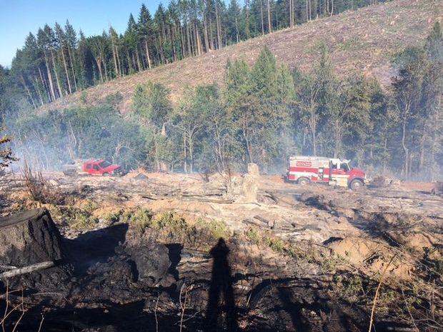 Firefighters contain brush fire near Newberg