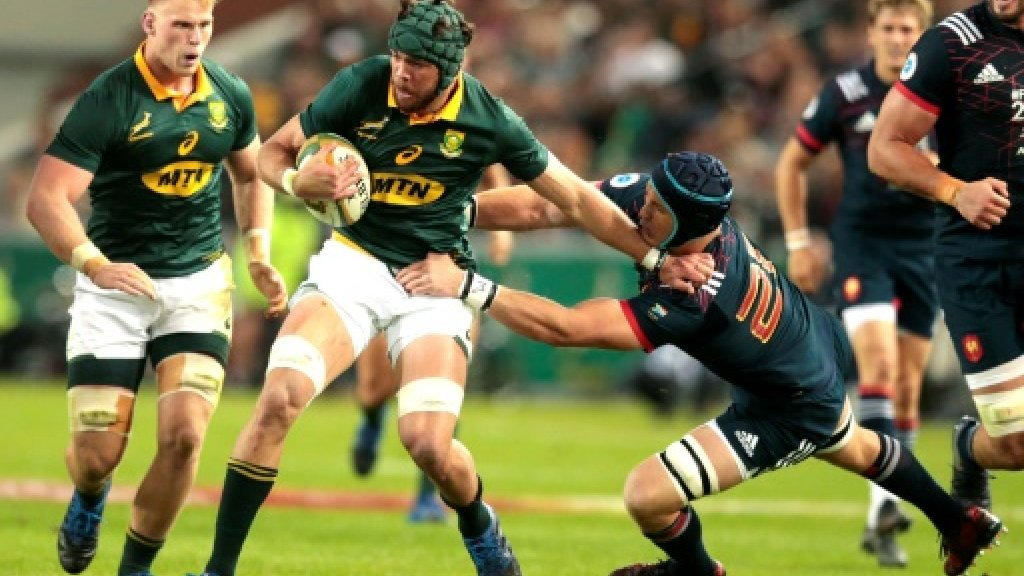 Springbok captain Whiteley's groin injury to be assessed Monday