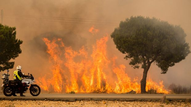 Forest fire in Spain threatens key nature reserve