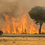 Forest fire in Spain threatens renowned national park