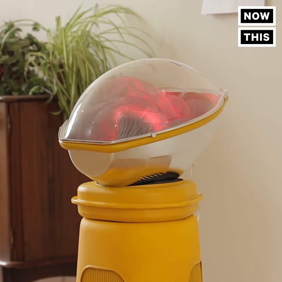 Artificial Womb In Living Room