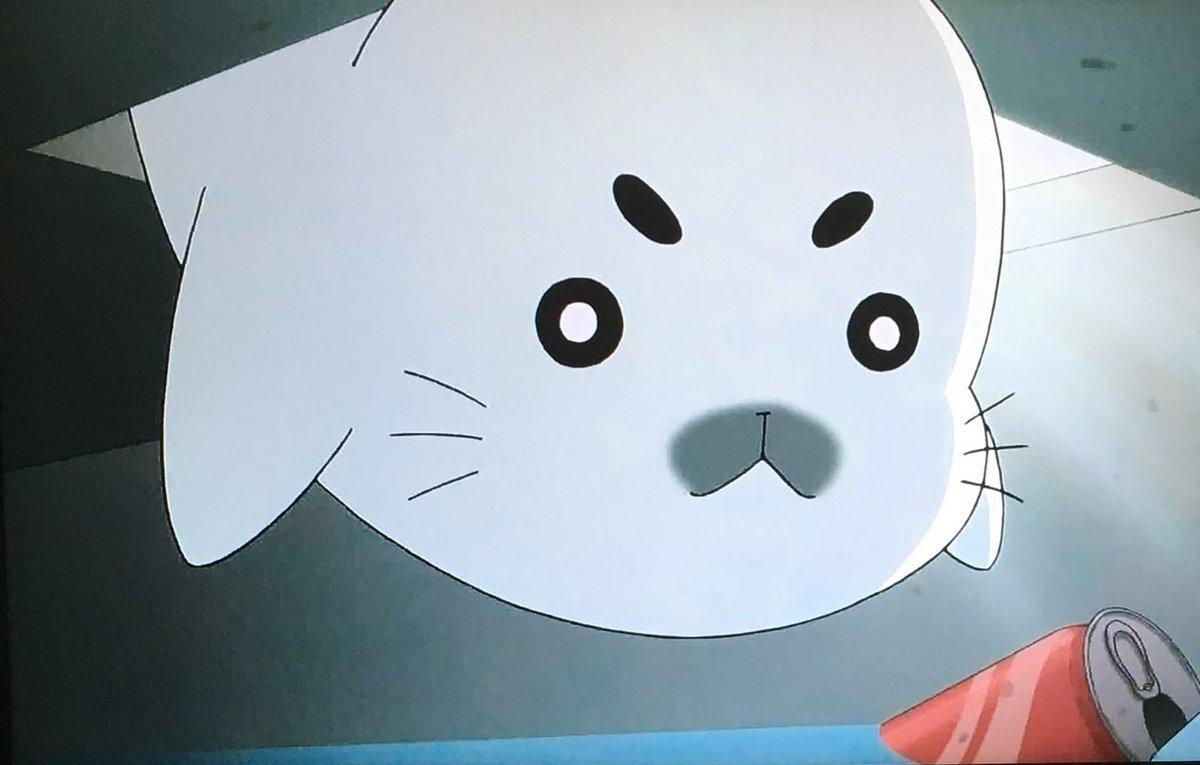 ↓中国だったらトップニュースだな…斑点是在槽轮哈马❗(ゴマフアザラシが溝に填まる!)Σ (・ω・ノ)ノ#少年アシベ #ゴ