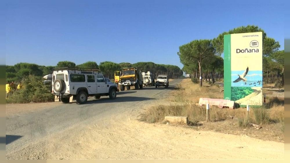 Spain wildfires: emergency services battle to control blaze