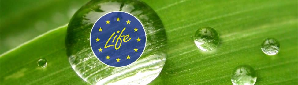 test Twitter Media - The 2017 call for proposals for LIFE grants are published: https://t.co/VZaCgyL7eV @LIFE_Programme https://t.co/xGbSEcCMCU