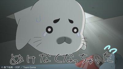 「少年アシベ GO!GO!ゴマちゃん 第2シリーズ」第11話「アザラシの恩返し」のアニメ無料動画リンクを更新しました!!