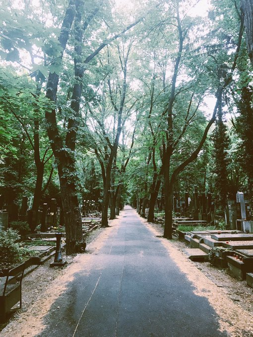 3 pic. Prague's largest cemetery🌿🕯💞 So peaceful, ivy everywhere, flowers, candles lit, rain drizzling💧✨