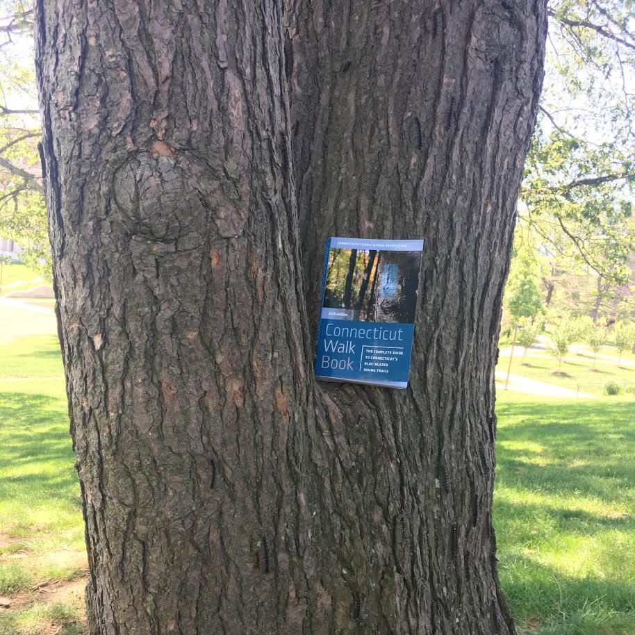 test Twitter Media - We're giving away a copy of the 20th ed. of the Connecticut Walk Book from @weslpress @CTwoodlands. Enter here: https://t.co/rDgsTKznUF https://t.co/ndD8SHwMhi