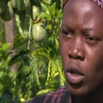 Immaculate Karungi shunned white collar work for passion fruit farming