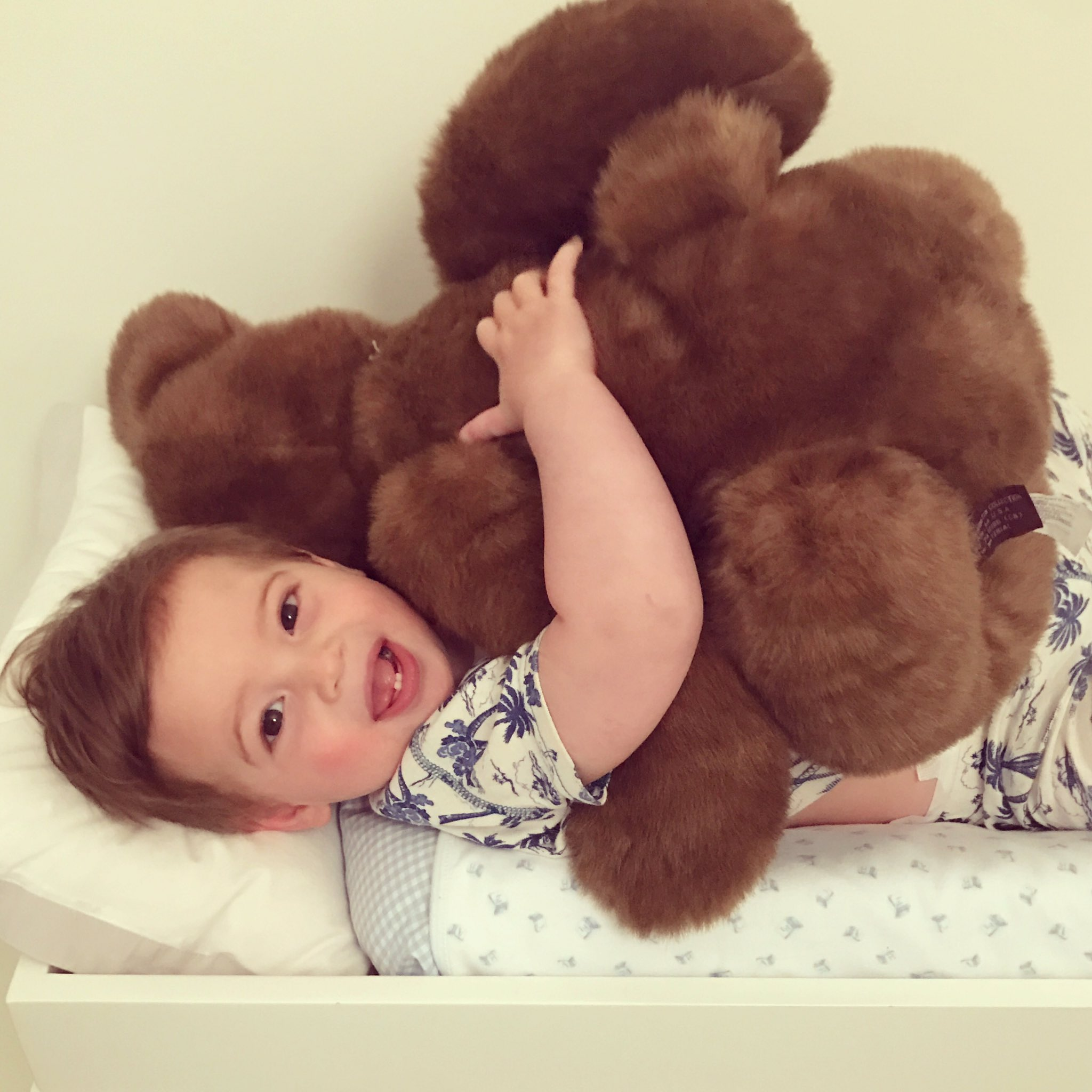 Teddy ���� x Teddy �� https://t.co/LVgTeotGvF