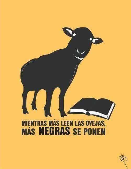 #SoyLaOvejaNegraPorque siempre hay un buen libro para #Leer 😉 https://t.co/WYvz5jfEf0