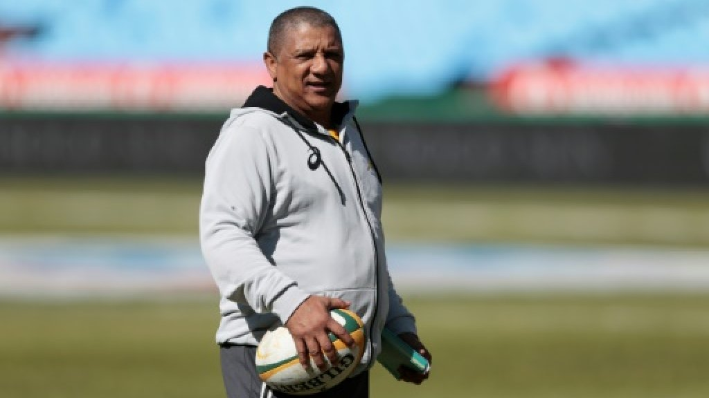 Coetzee staying as Erasmus hired, stress South Africa