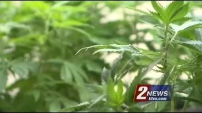 First Day of Recreational Marijuana Sales in Nevada