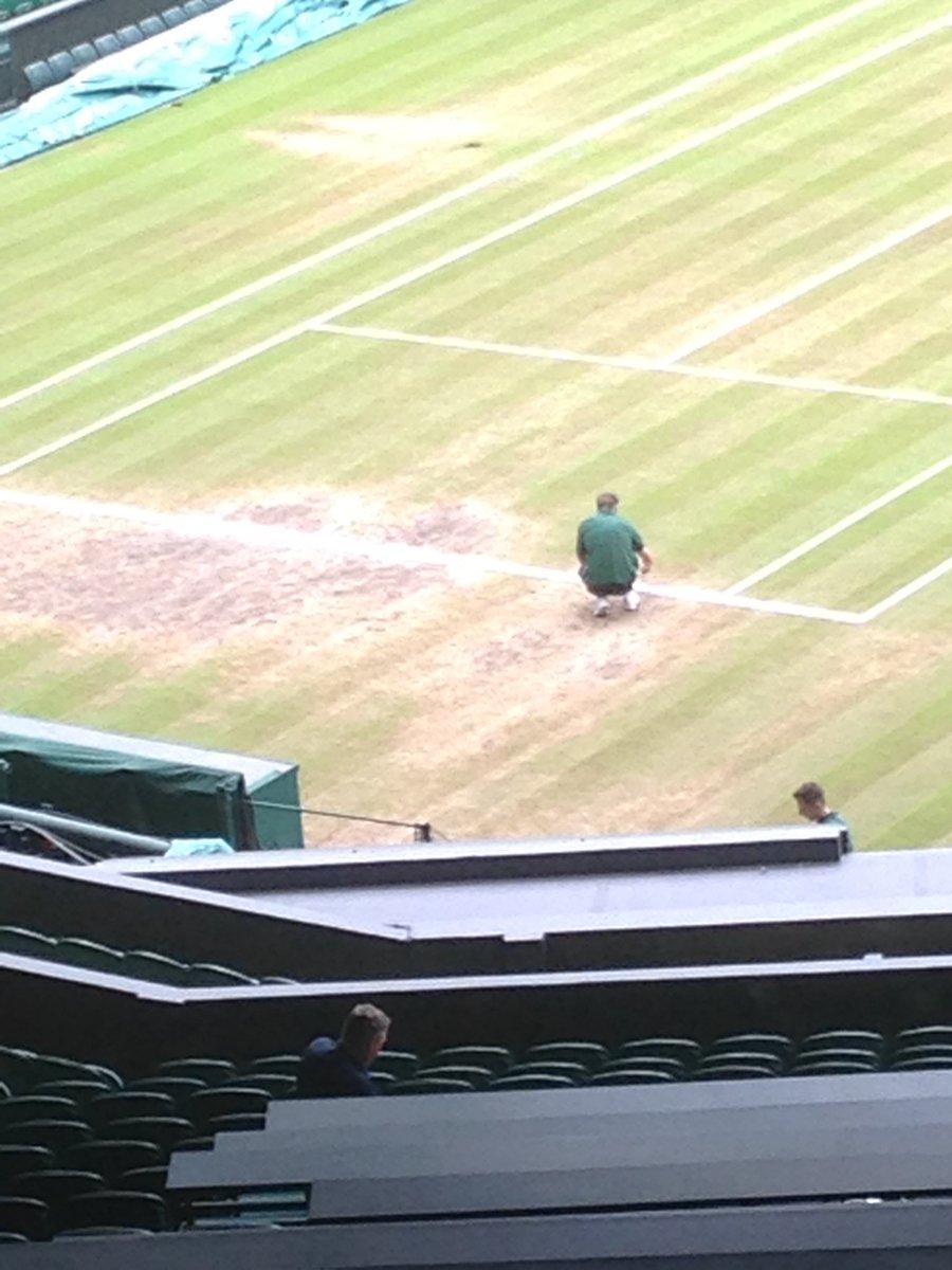 #WimbledonFinals