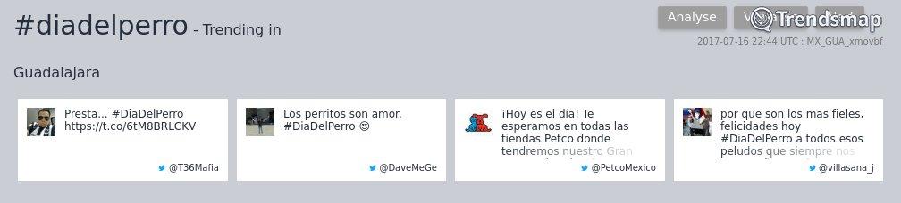 #diadelperro es ahora una tendencia en #Guadalajara  https://t.co/YJUO9asiST https://t.co/O86Jt69b1u
