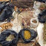 Kenya's Health Ministry seeks help from traditional healers