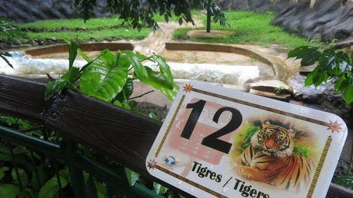 Puerto Rico economic crisis hits island's only zoo