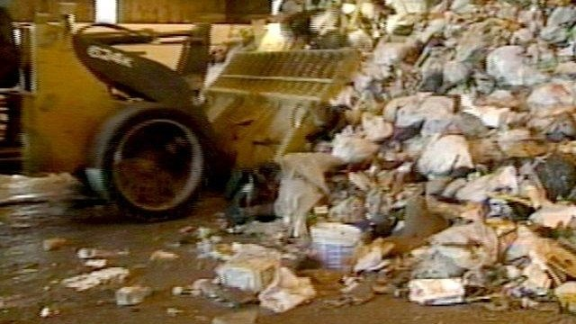 State contractor checking garbage for recyclables