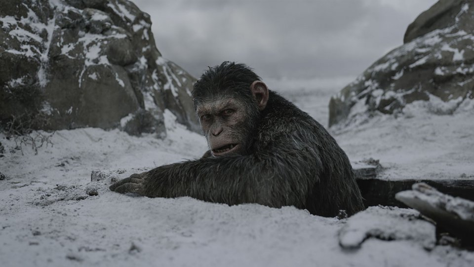 5 things to know before seeing '#WarforthePlanet of the Apes' https://t.co/SFBP1TnYwV https://t.co/G0jBalFf3h