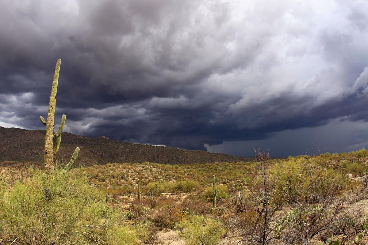 The unique weather phenomenon behind tragic Arizona flash floods