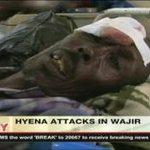 Wajir wildlife victims to get Sh121m - VIDEO