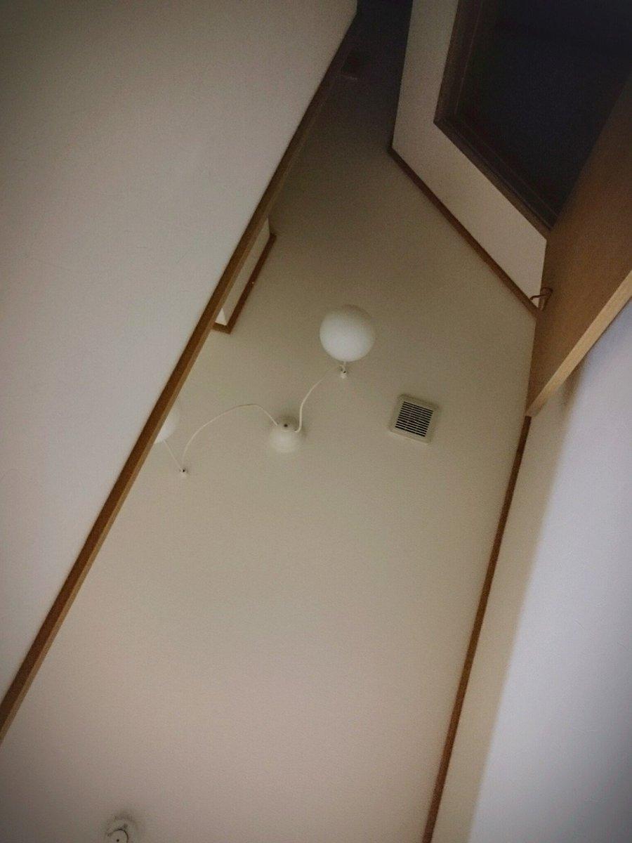 めんどくさくて 寝ながら廊下を進んでるんだけど、オイ 天井こんなんだっけ  アァ床きもちいい https://t.co/63oD8BlNoA
