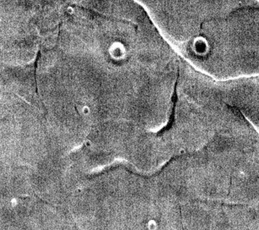 'Do you see what I see?': 'Face' spotted on Mars as NASA releases bizarre photo