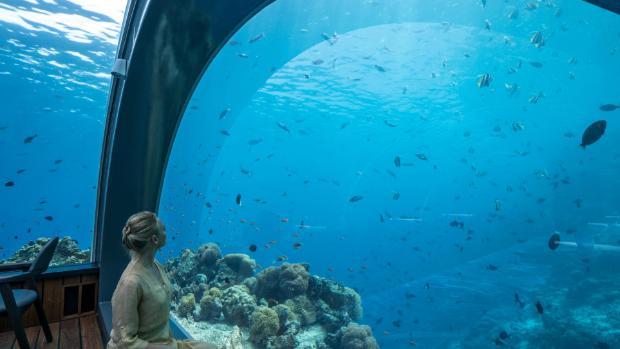 Hurawalhi, Maldives: Dining in the world's first, Kiwi-made underwater restaurant