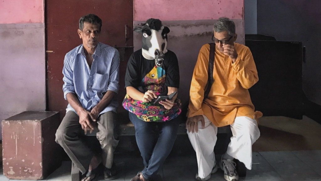 THE 51% - Are cows safer than women? Photographer protests India's 'double standards'