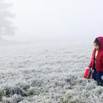 Freezing start to school holidays after sub-zero morning in the South