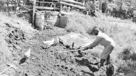 Drought-hit herders cash in on manure