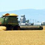 Japan and EU strike trade deal as Montana farmers look on