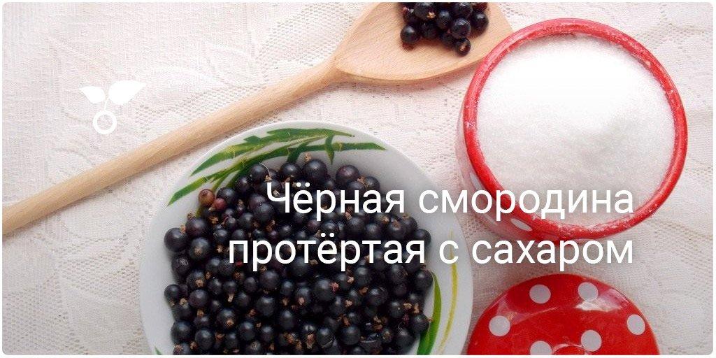 Рецепты смородина с сахаром