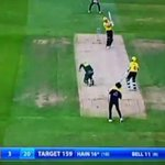 Watch the horrific accident which left cricket stars in tears after Nottinghamshire Outlaws bowler Luke Fletcher is hit on head by ball in horror accident live on Sky Sports